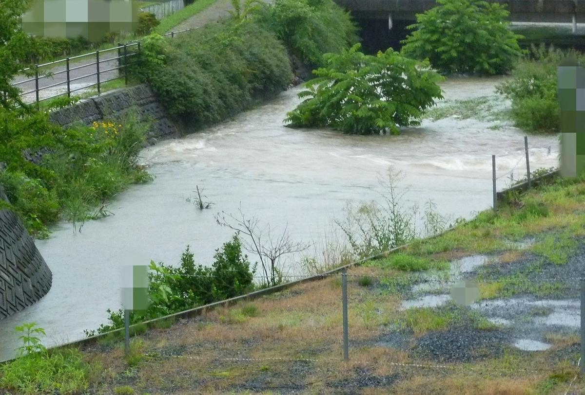 増水した小さな川