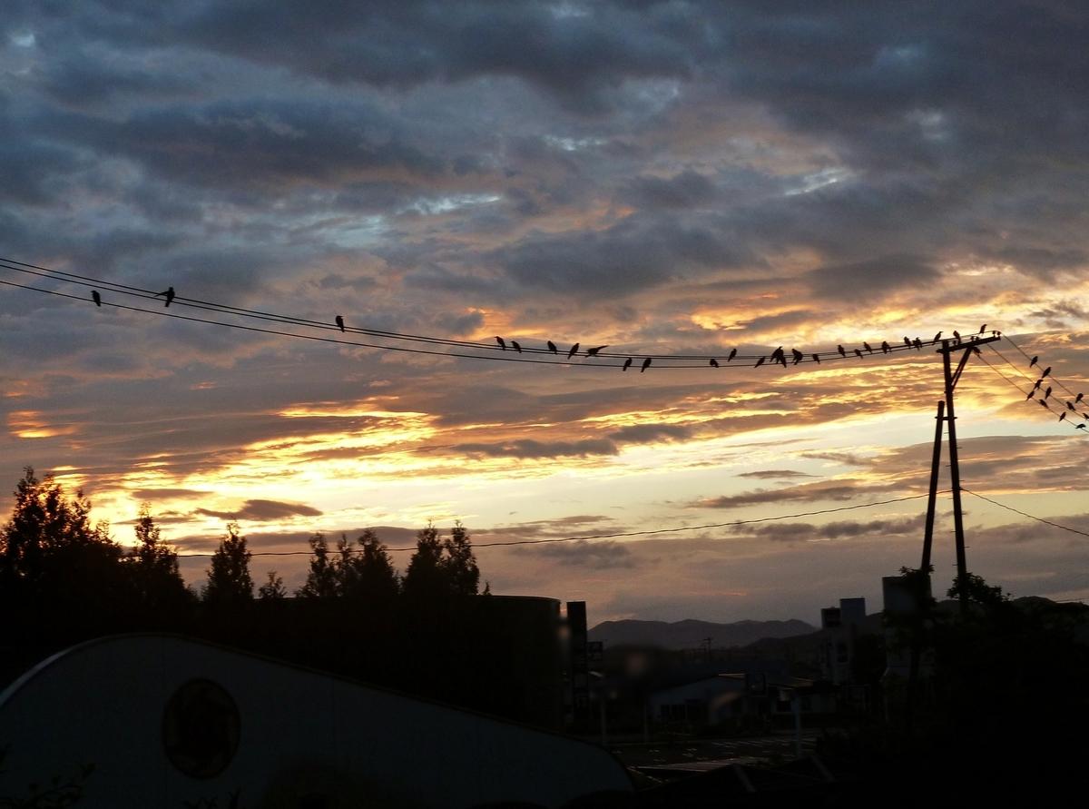夏の夜明け 2020年8月12日撮影