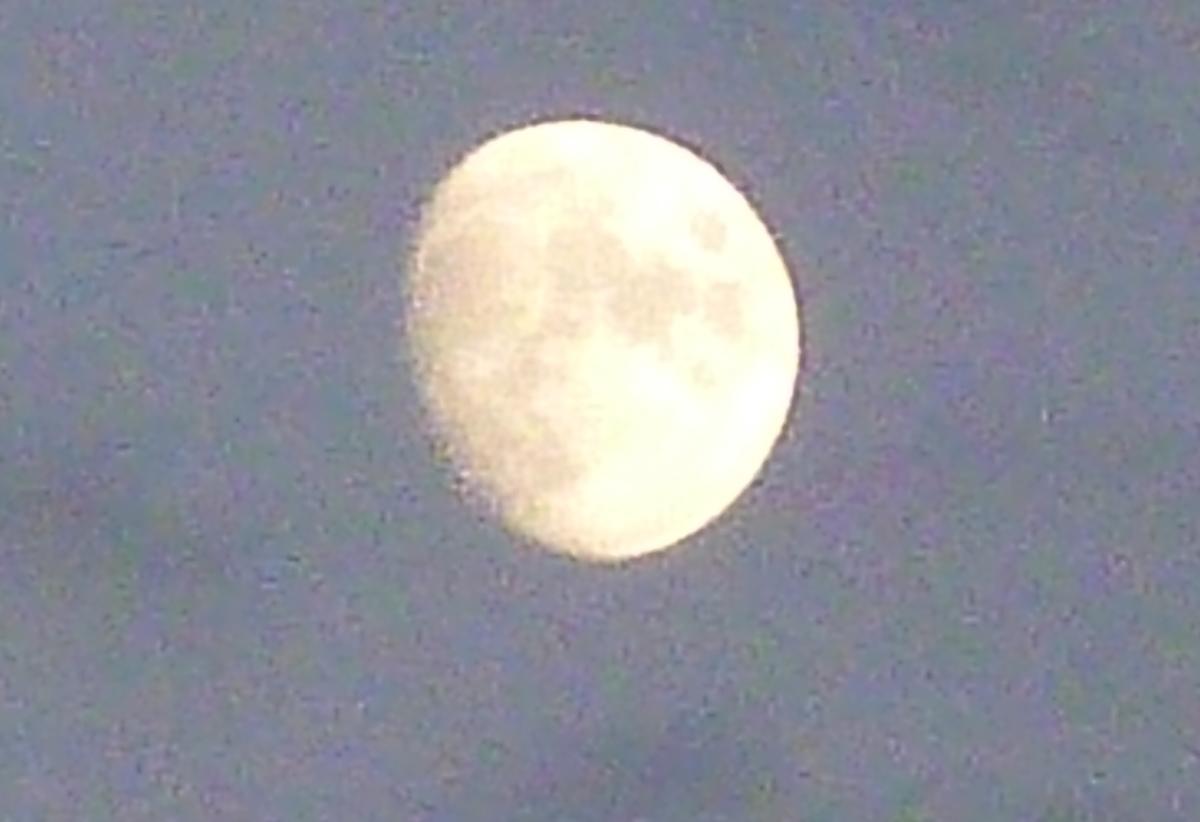 空に浮かぶ大福に似た月