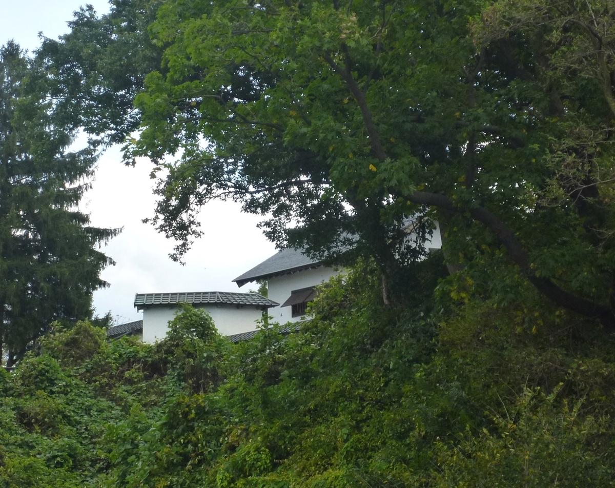 木々の間に覗く城