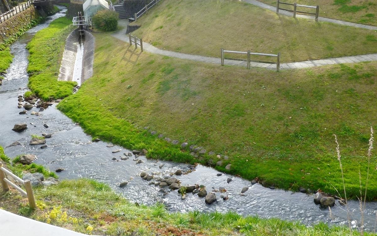 公園の芝と小川