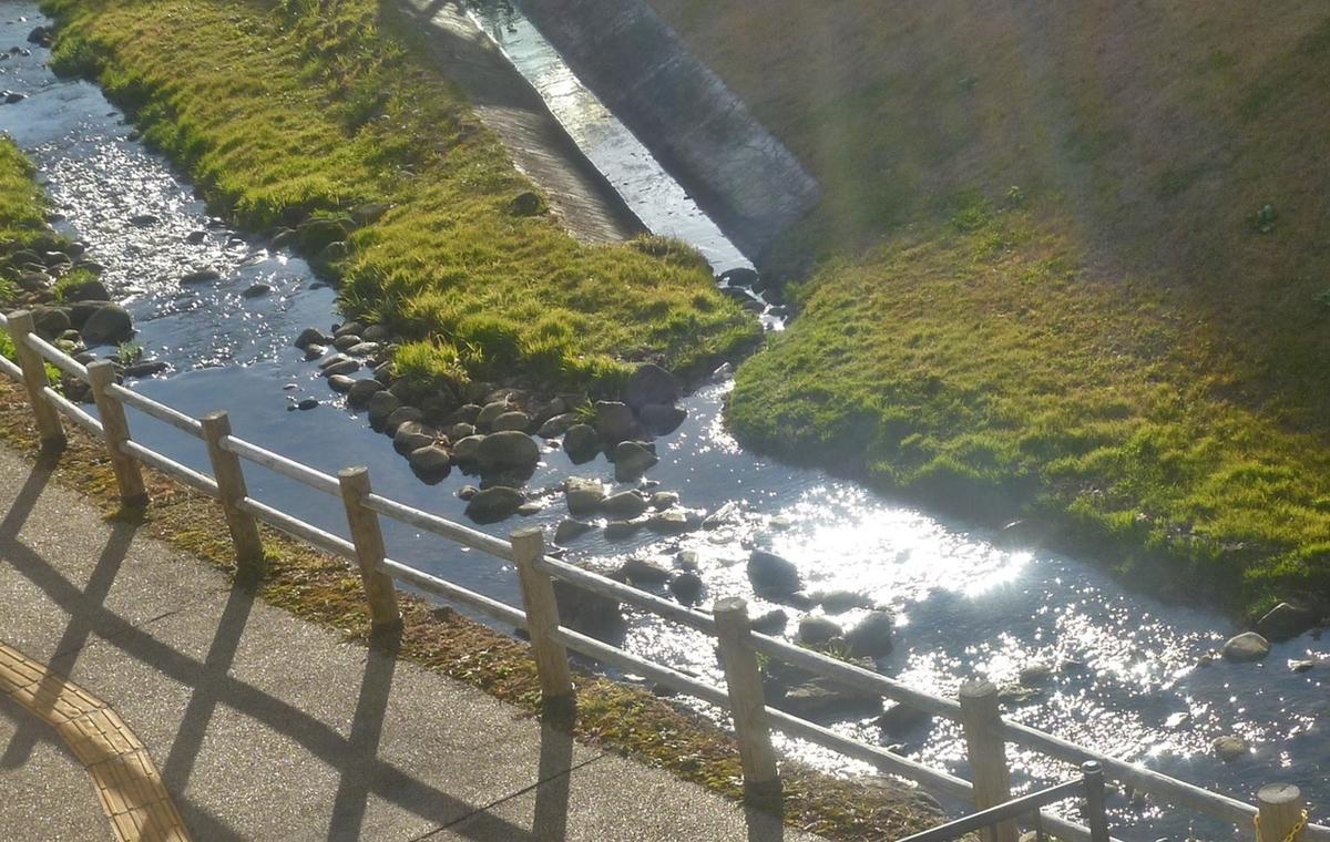 川面がキラキラ光る小川