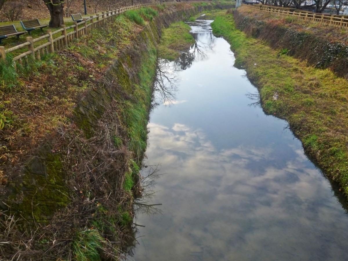 小川の上流方面