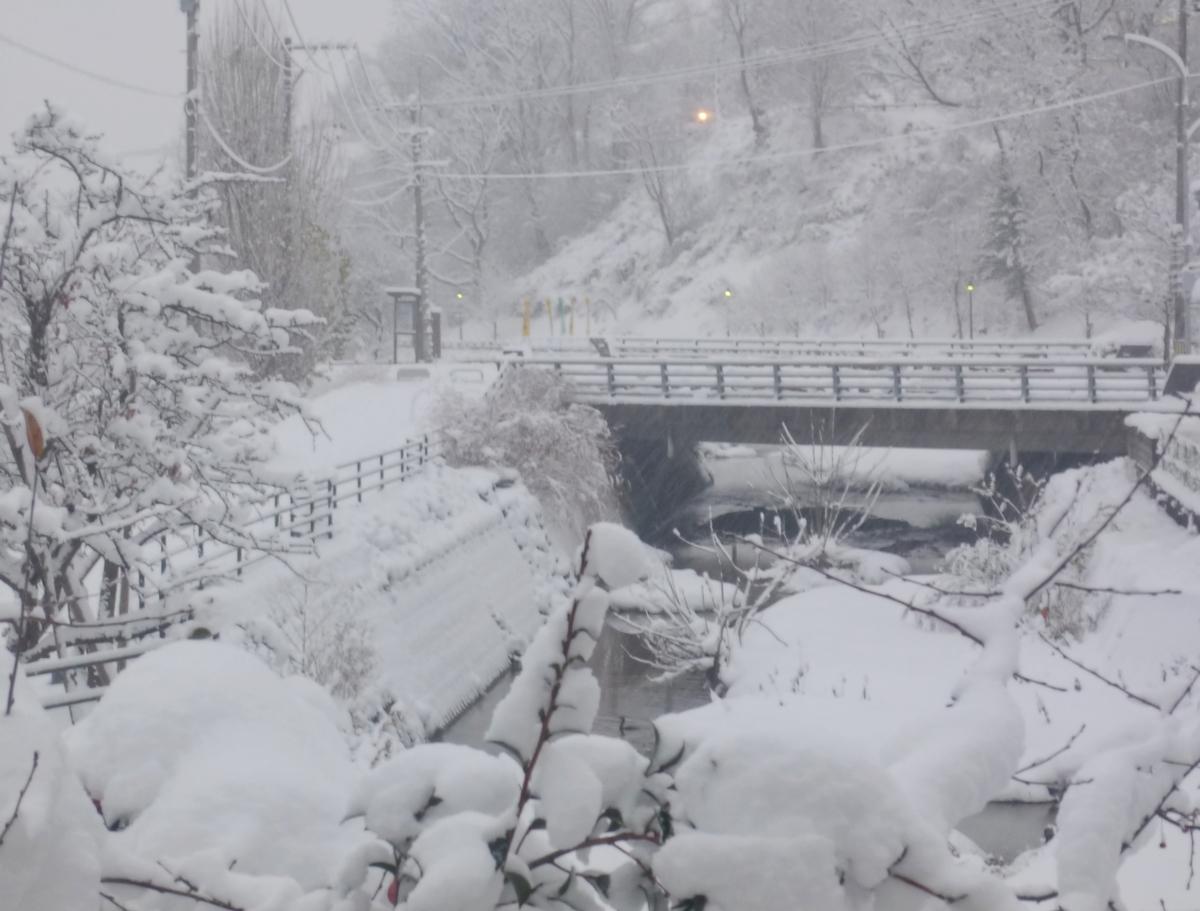 大雪の雪景色