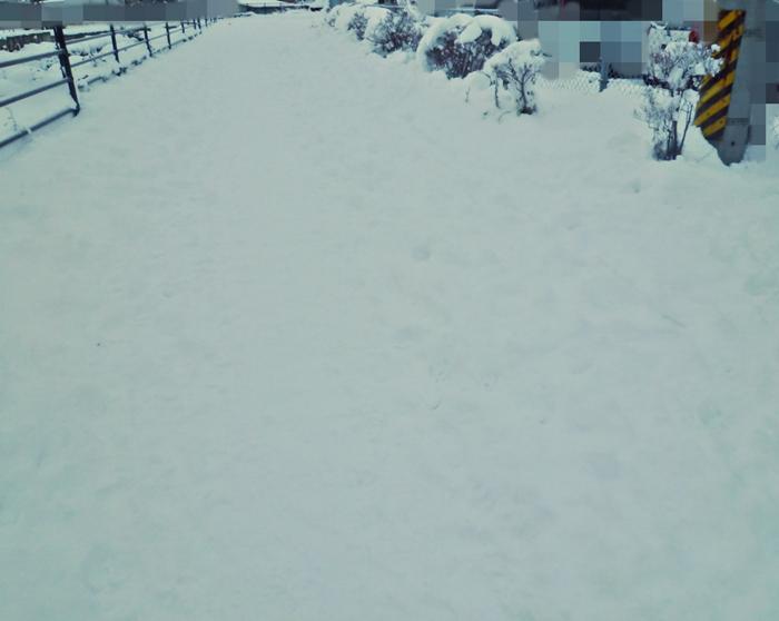 人気のない雪道
