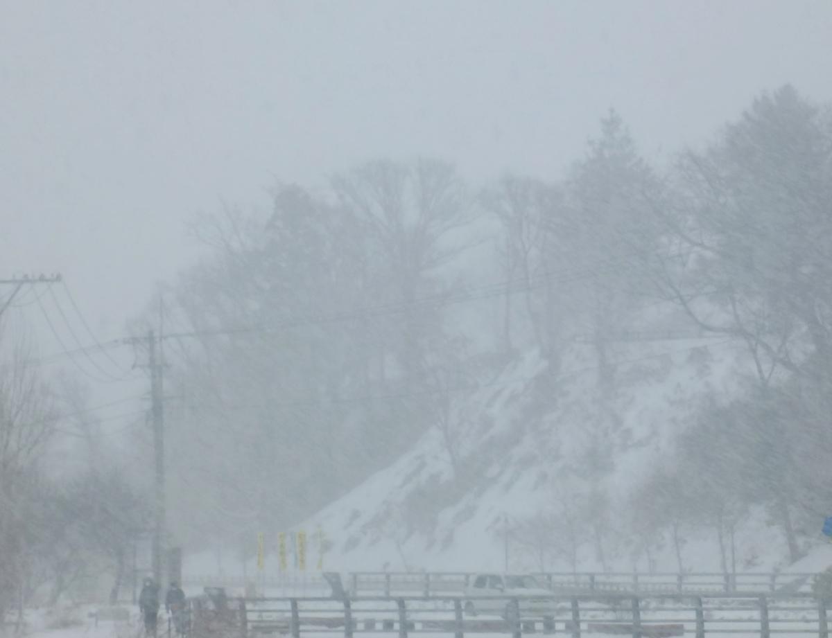 吹雪 大雪の景色