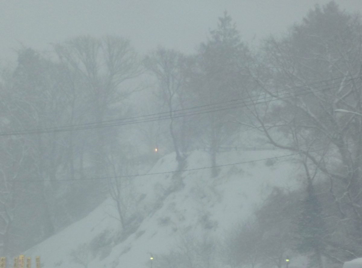 吹雪にかすむ景色 2021年2月4日撮影
