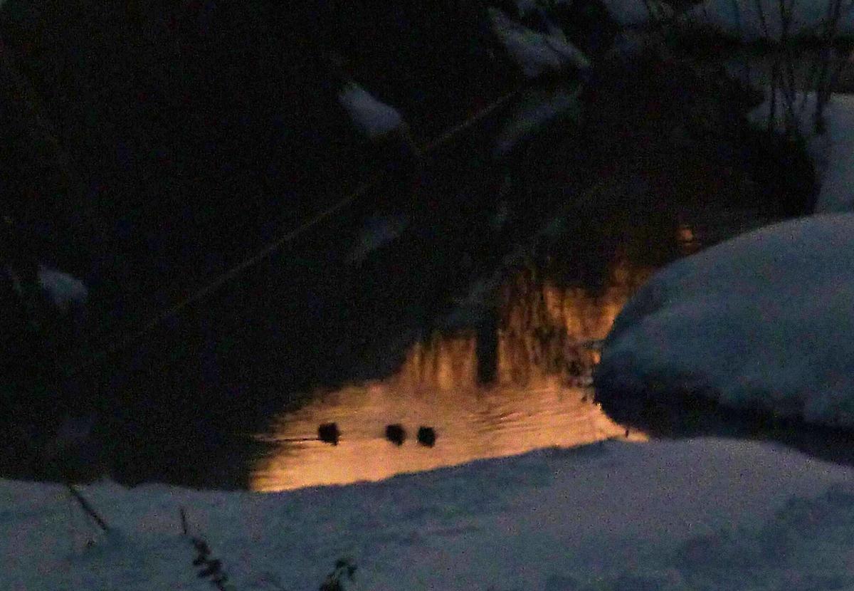川面に映る朝焼け