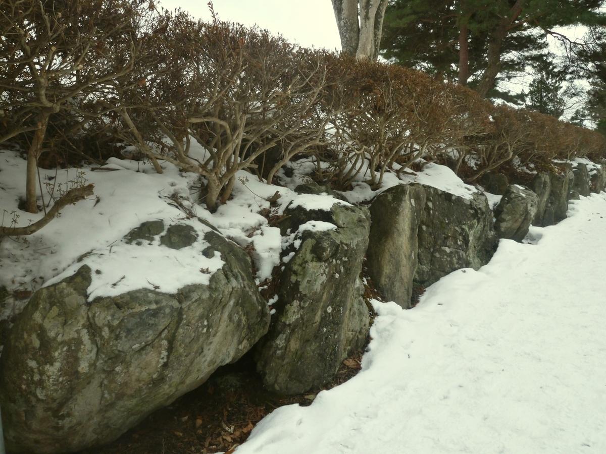 古い石と生垣