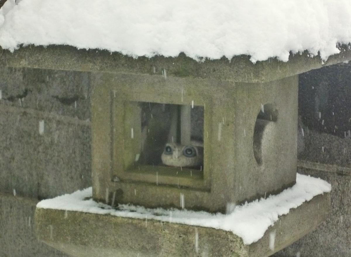 雪が積もった石灯篭とカエルの置物