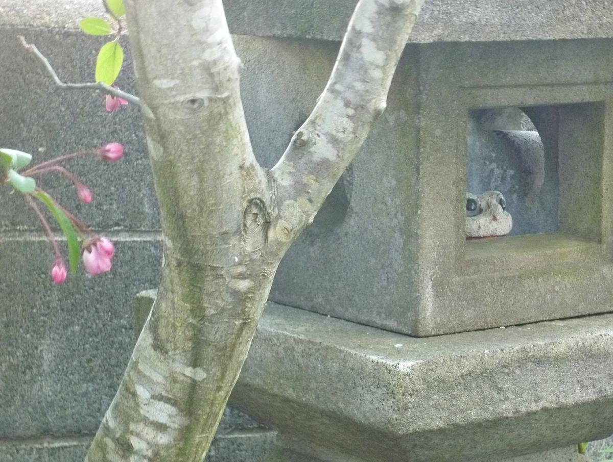 石灯籠とカエルの置物