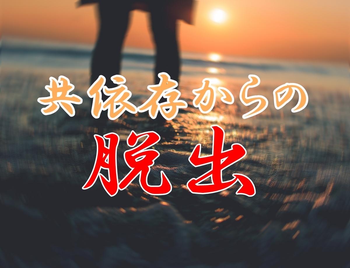 親の支配脱出マニュアル 藤木美奈子 共依存 親子 脱出