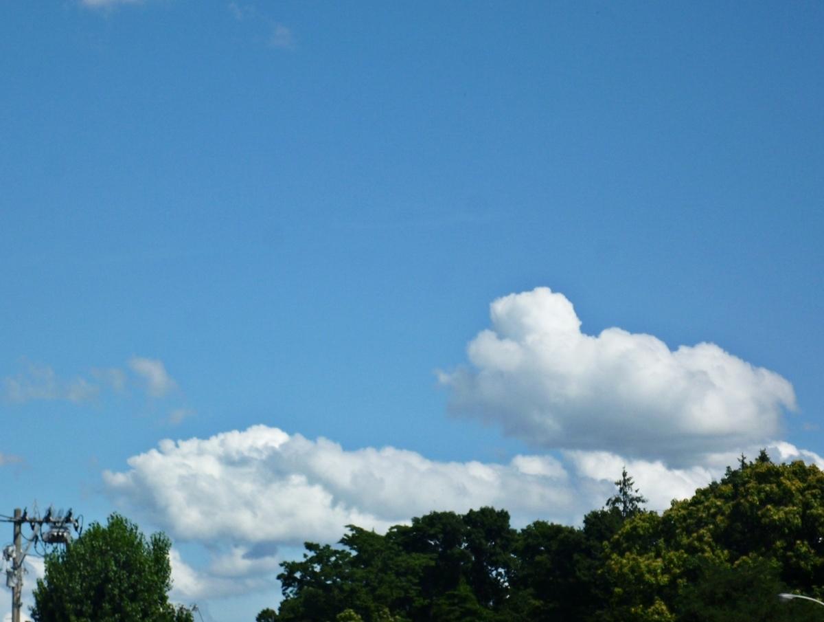 地平線側の雲