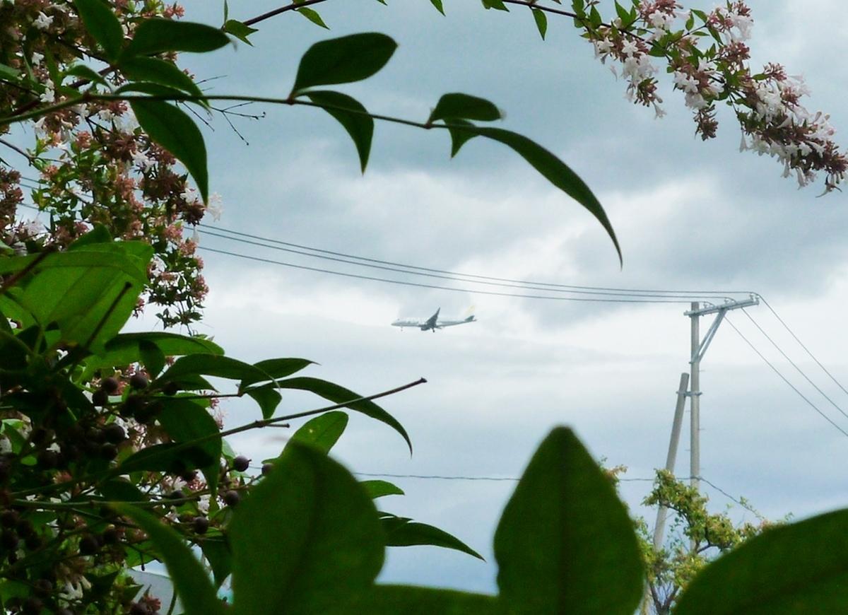 庭から見た飛行機