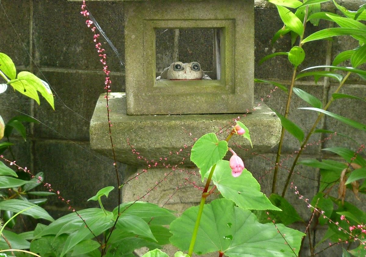 庭先 石灯篭 カエルの置物 ベコニア