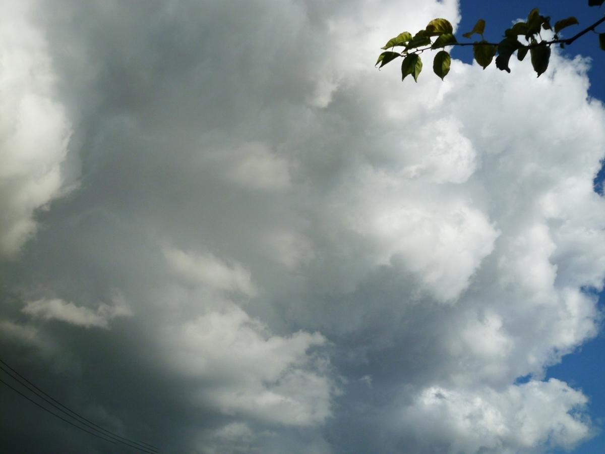 迫力のある雲