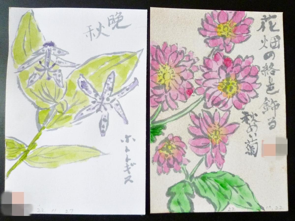 母が遺した絵手紙 シュウメイギク ホトトギスの花