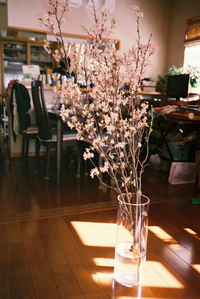 f:id:yamawarauyama:20170311145150j:plain