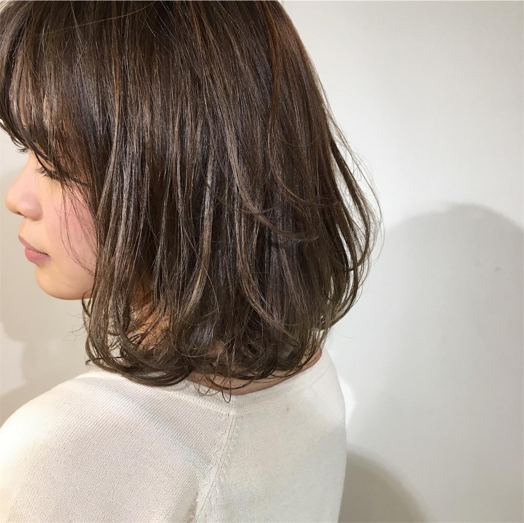 f:id:yamayanobuhiko:20170225172757j:image