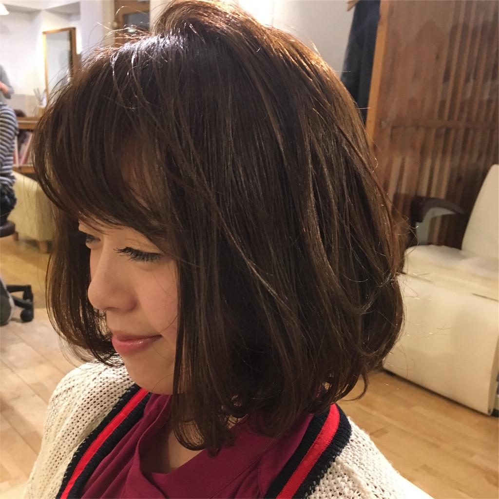 f:id:yamayanobuhiko:20170304133922j:image