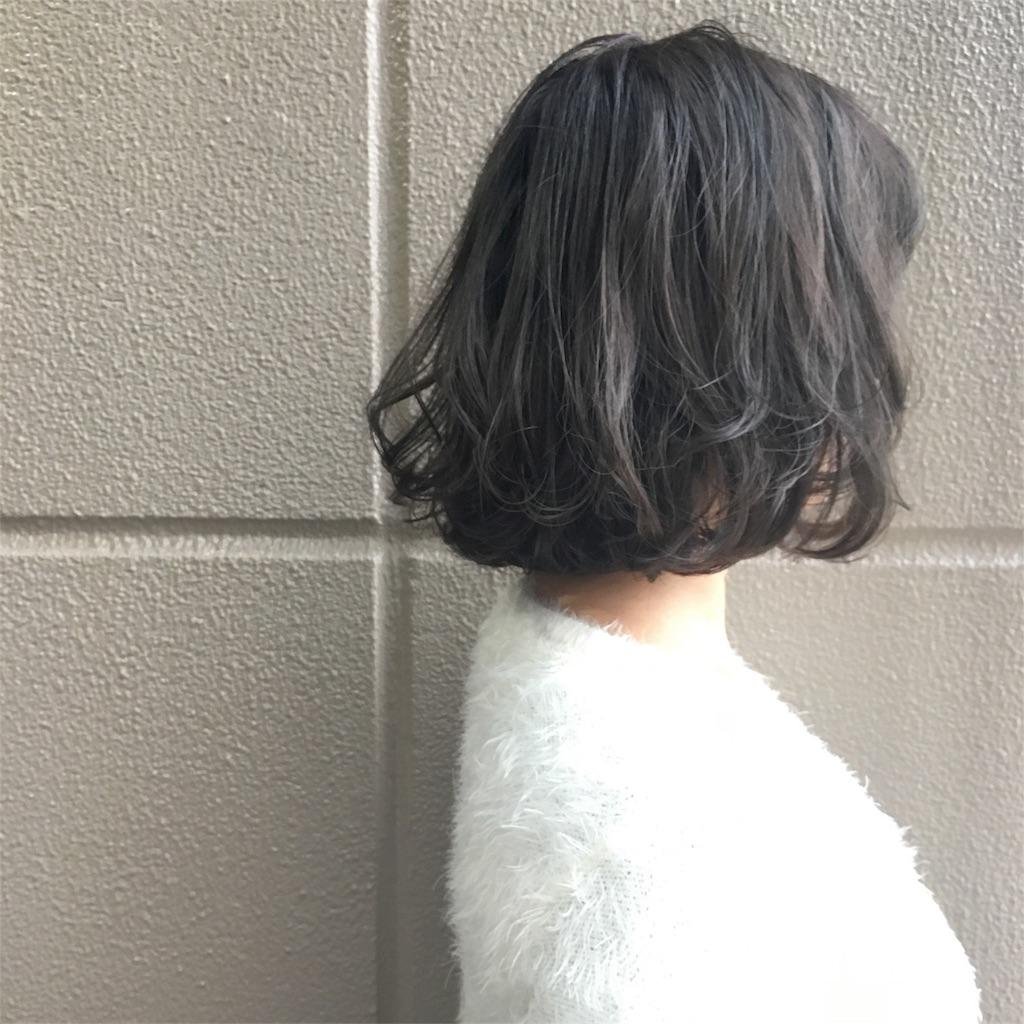 f:id:yamayanobuhiko:20170304134717j:image