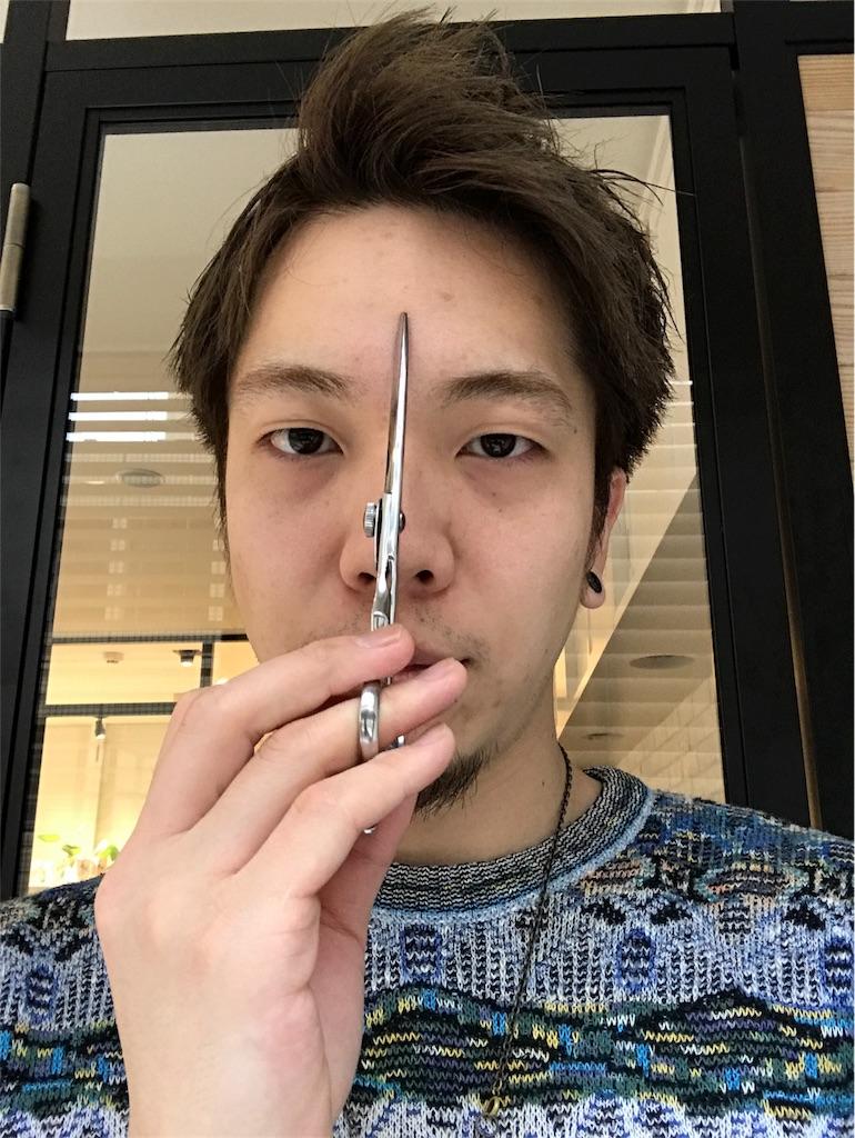 f:id:yamayanobuhiko:20171118134452j:plain
