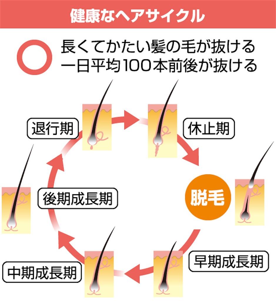 f:id:yamayanobuhiko:20180528204722j:image