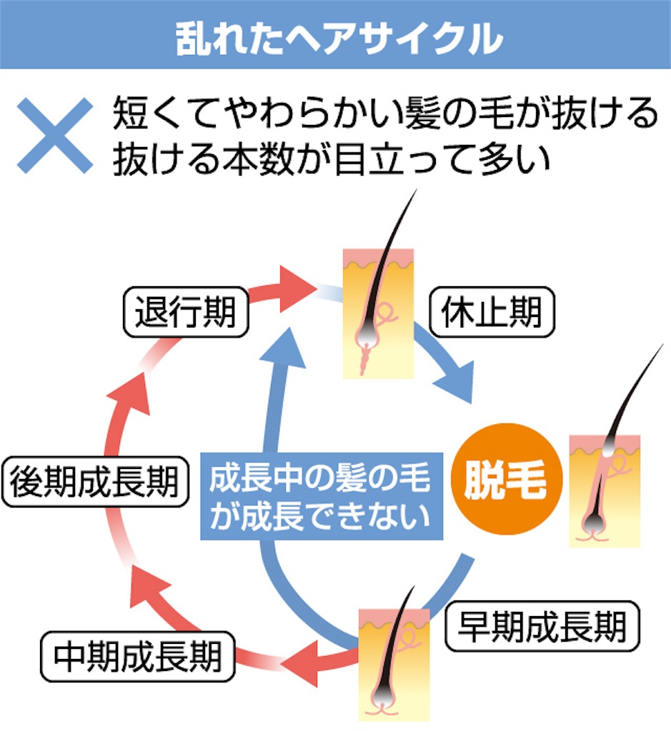 f:id:yamayanobuhiko:20180528204737j:image