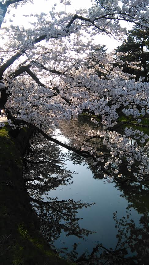 f:id:yamayuuri:20170424185705j:plain