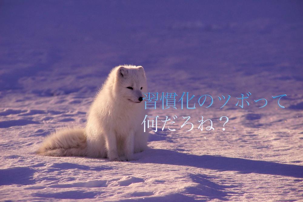 f:id:yamazaki-takashi:20161101124857j:plain