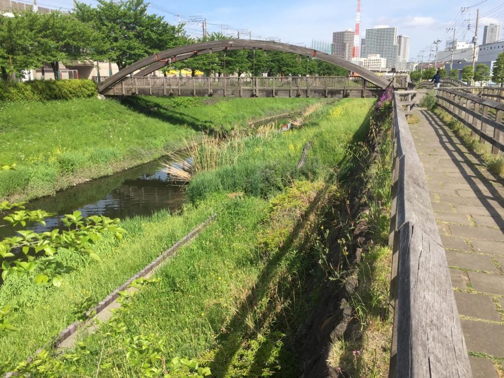 f:id:yamazakikotaro:20170504115815j:plain