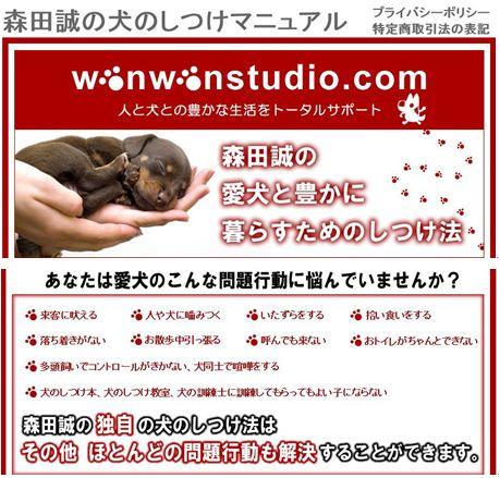 f:id:yamazakura77777:20170118144125j:plain
