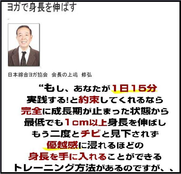 f:id:yamazakura77777:20170208150835j:plain