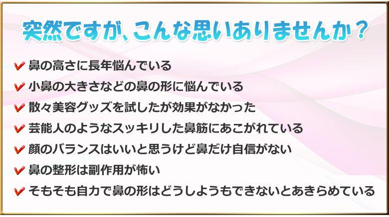 f:id:yamazakura77777:20170228152422j:plain