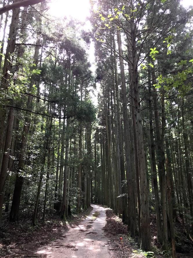 f:id:yaminoburogu:20200930202302j:plain