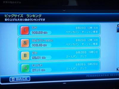 20110815113849.jpg