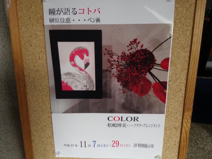2015-1121-135233.jpg