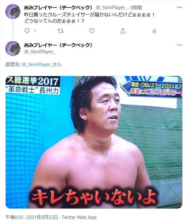 f:id:yamipla:20210822181220j:plain