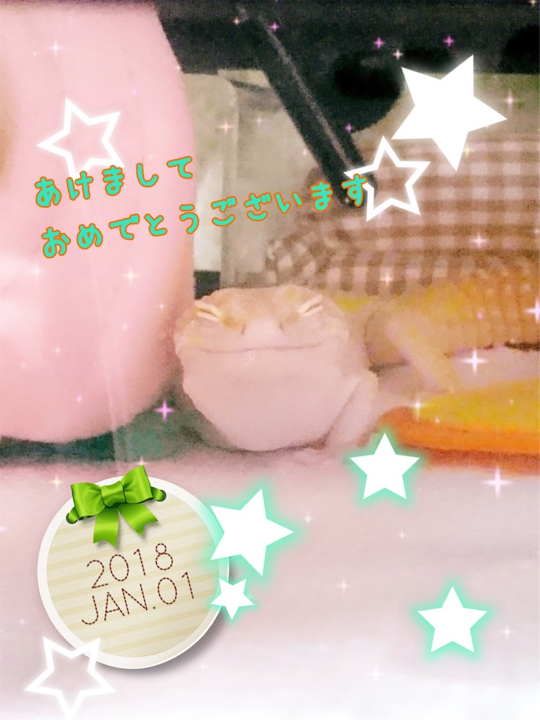 f:id:yamorimiyuki:20180101205542j:image