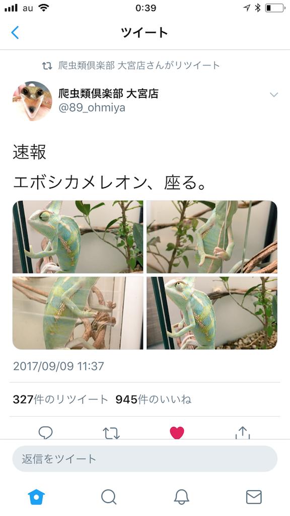 f:id:yamorimiyuki:20180817004327p:image