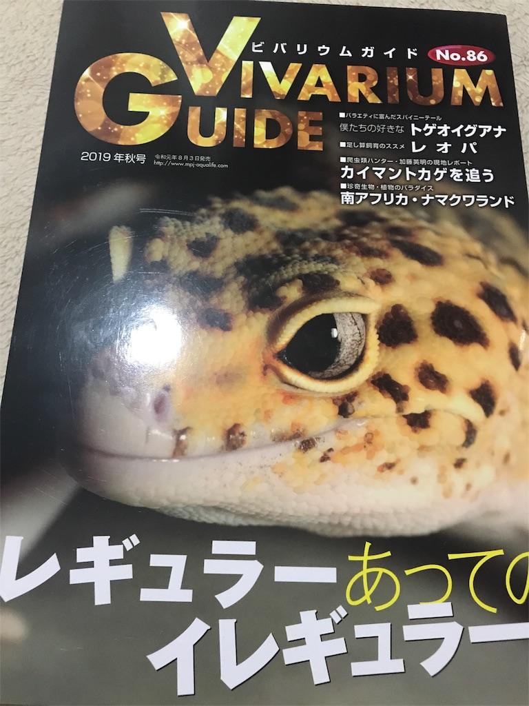 f:id:yamorimiyuki:20190818224913j:image