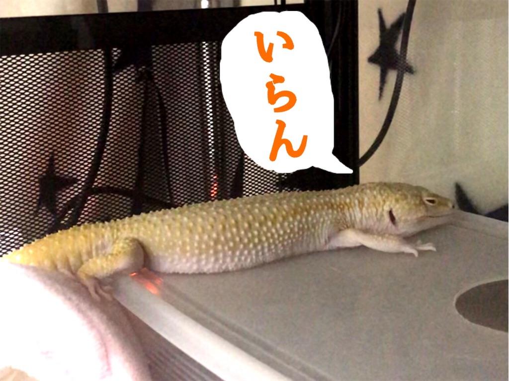 f:id:yamorimiyuki:20190830223746j:image
