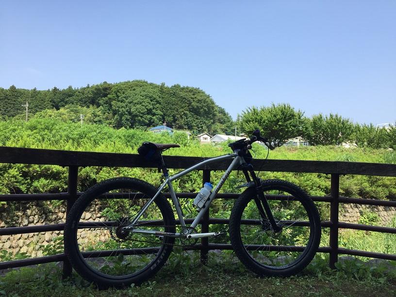 f:id:yamsugano:20210530162710j:plain