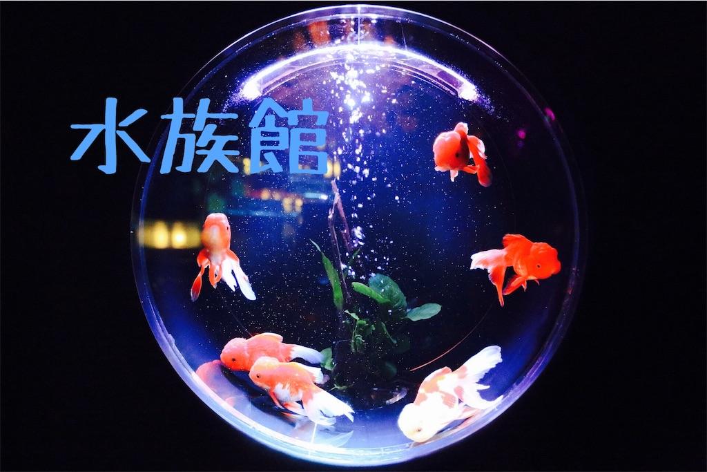 f:id:yanagiii:20171017162507j:image