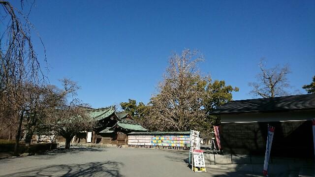 f:id:yanagishoko:20180208201608j:image