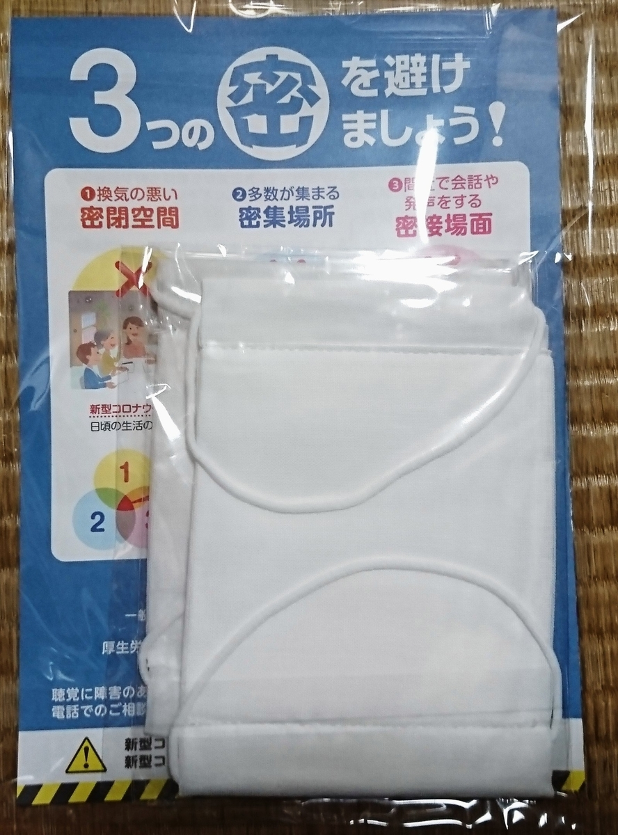 f:id:yanagishoko:20200523214100j:plain