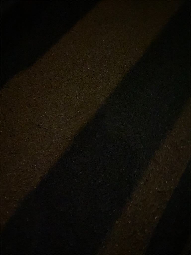 f:id:yanaharamizuho:20210510065711j:image