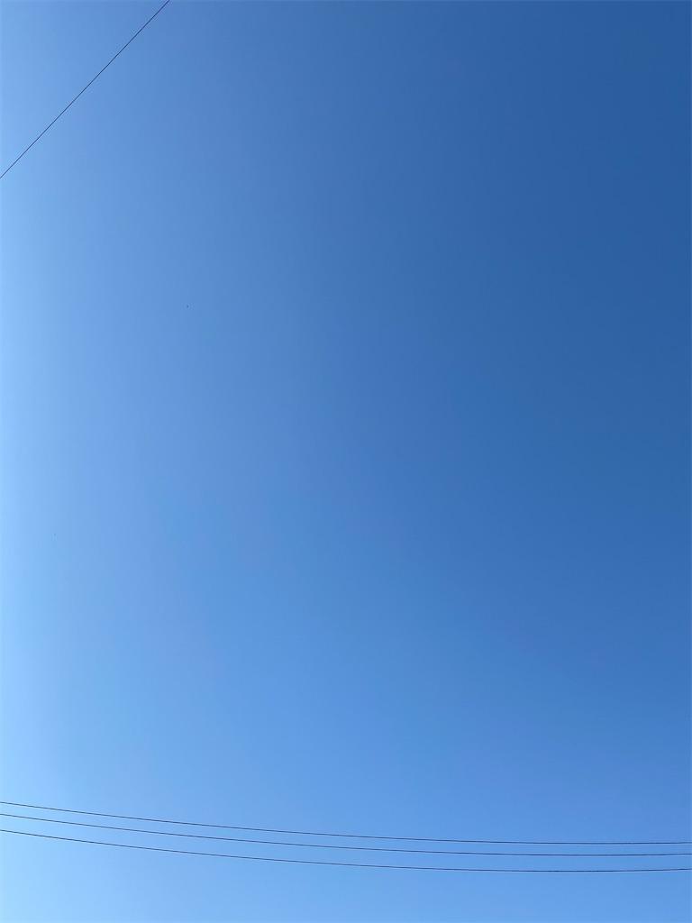 f:id:yanaharamizuho:20210511065441j:image