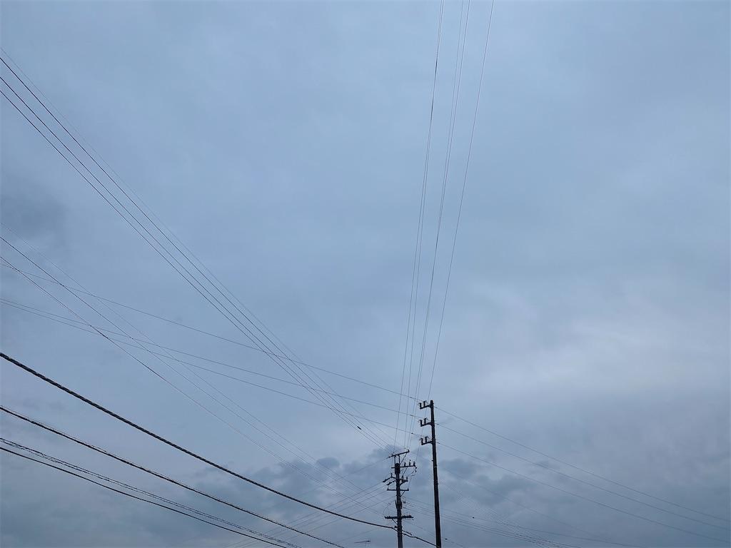 f:id:yanaharamizuho:20210512071042j:image