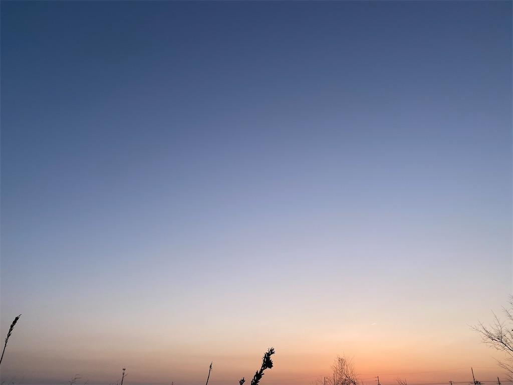 f:id:yanaharamizuho:20210525054123j:image